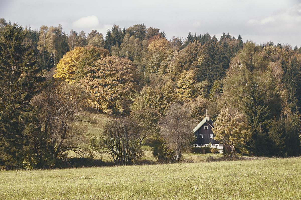 House . 10/2014 . Marek Novotny